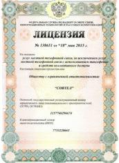 license-lg-2